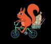 10_Squirrel_Rob_transparent_bg-copy-min.png